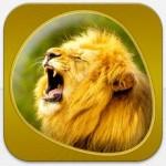 Animals 360 Gold – Tierquiz, Tierbilder und Tierstimmen für iPhone und iPad heute gratis